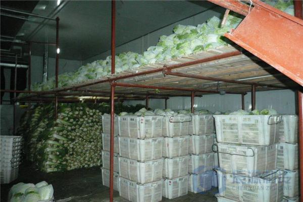 蔬菜冷库厂家
